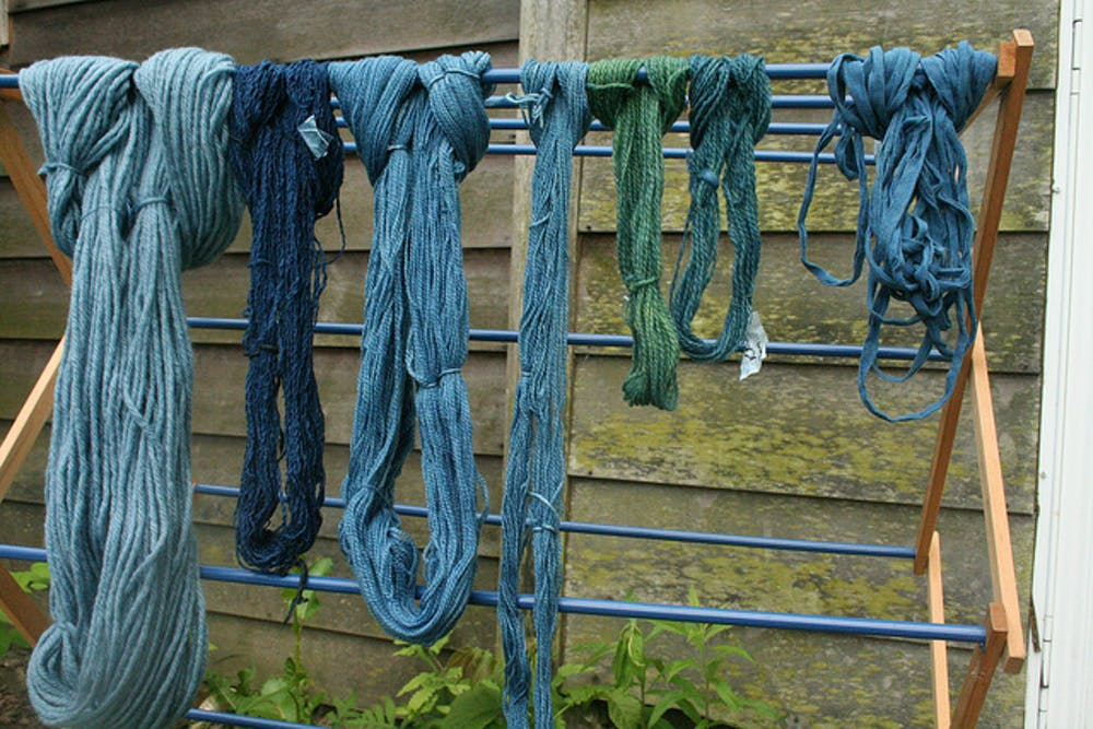 Natural Dyeing using Dyer's Woad